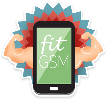 Fit GSM